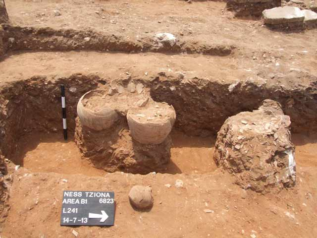 5. Area B, in-situ jars, looking west.