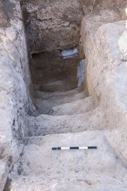 3. Stratum I, the hewn stairs of the ritual bath (miqve), looking south.